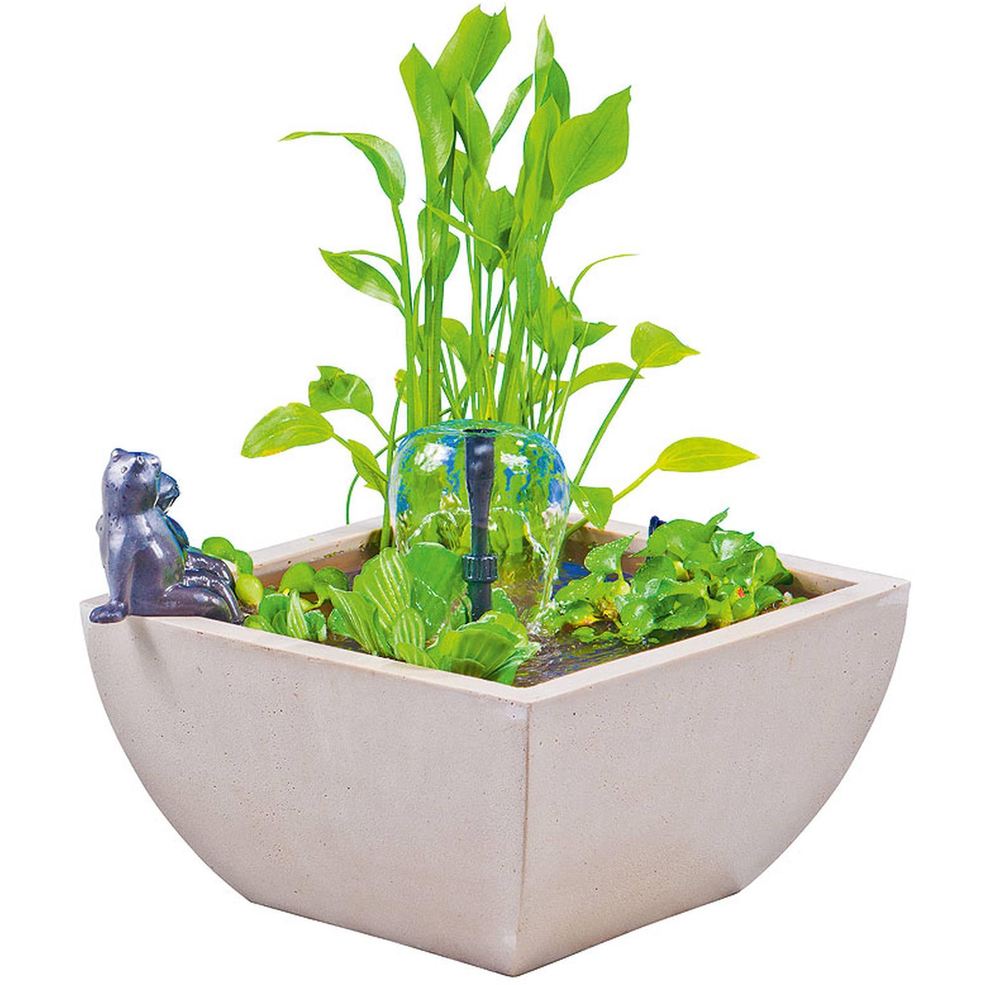 Wassergarten groß, rechteckig, weiss mit Froschfigur schwarz (Froschpaar)