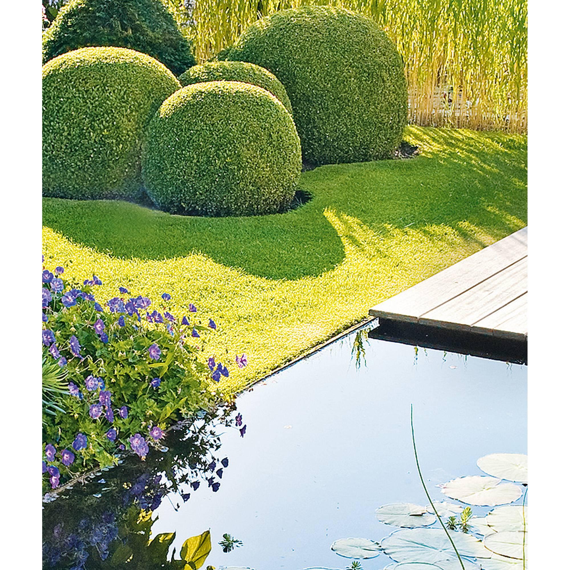 Teichrandpflöcke 60 cm, 10er Set von Heissner, Rasenkante, Teichkante